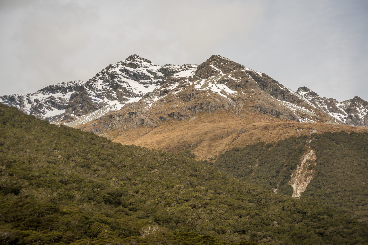 Pt 1999m (Ailsa Mountains) above McKellar Hut, Greenstone Track