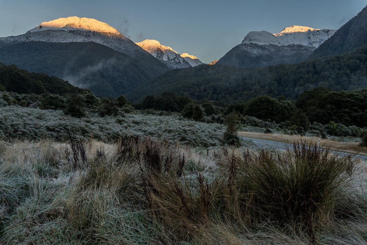 Early morning frost at Cameron Flat, Makarora Valley