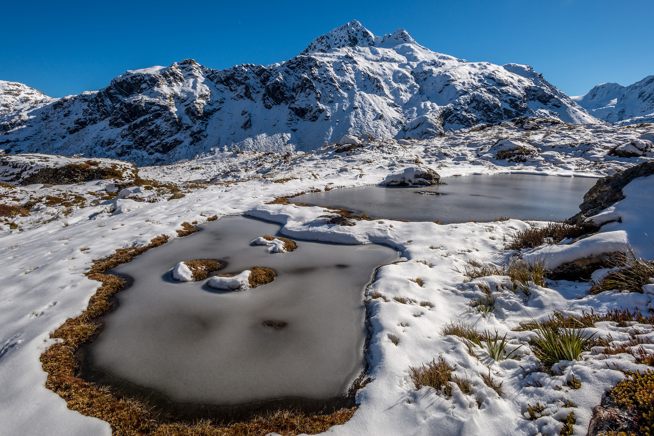 Mount Xenicus and the tarns above Routeburn Falls Hut