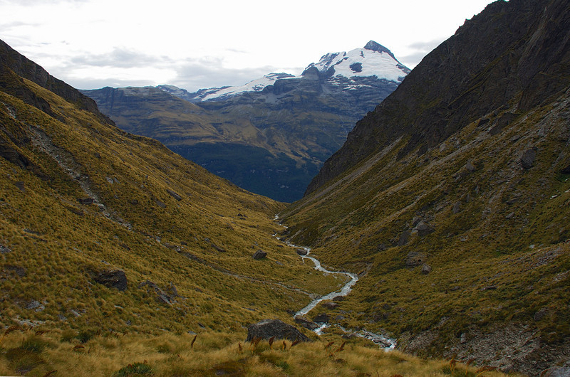 Looking down Little Devil Creek. The east peak of Mount Earnslaw above