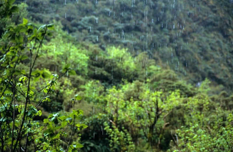 Arawhata rain