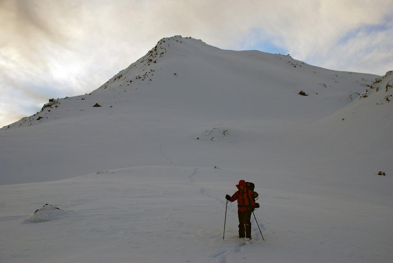 Mount Alta