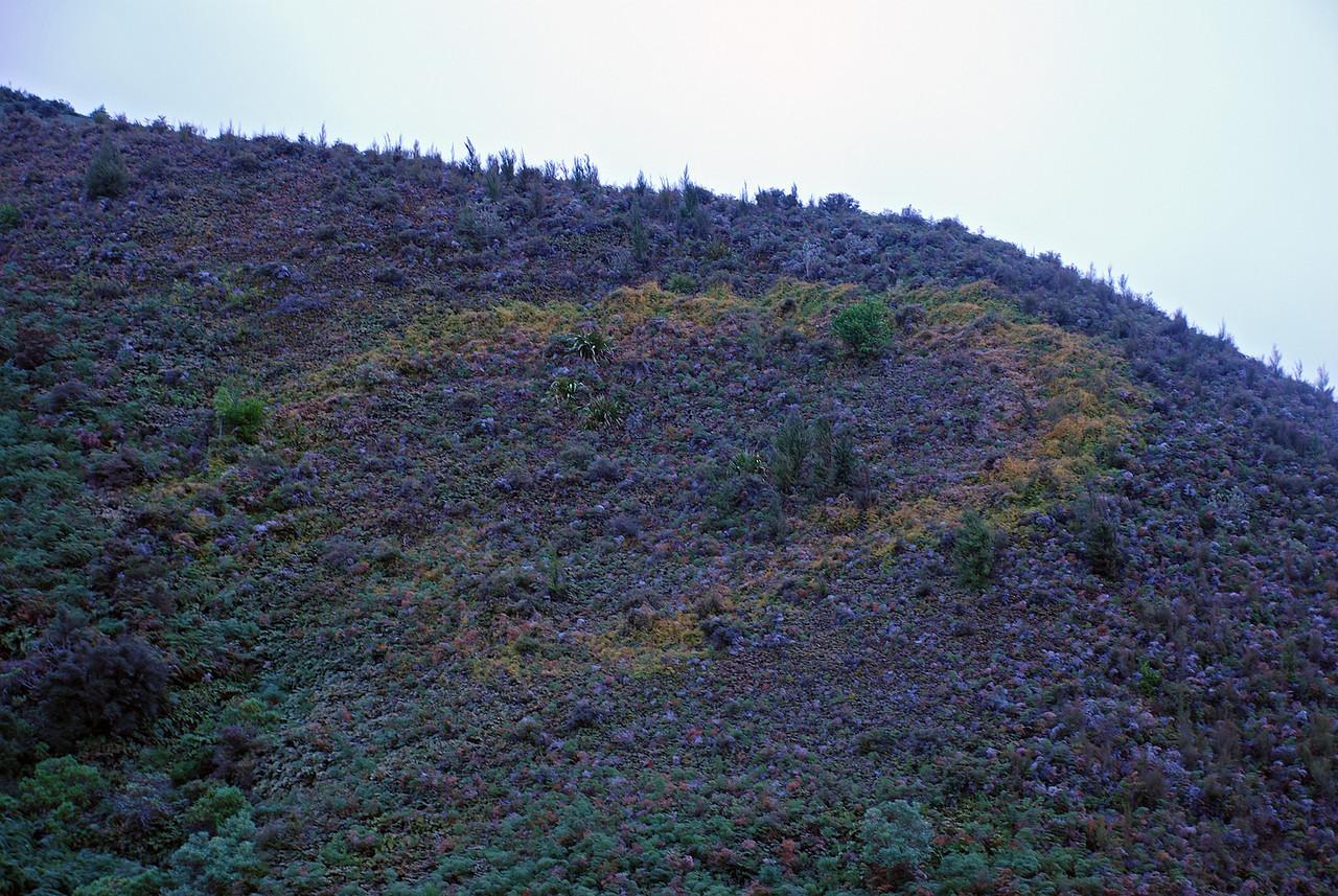 UFO landing spot near the Rumbling Burn track