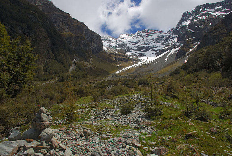 At bushline in the Glacier Burn. Mount Bonpland at the head of the valley