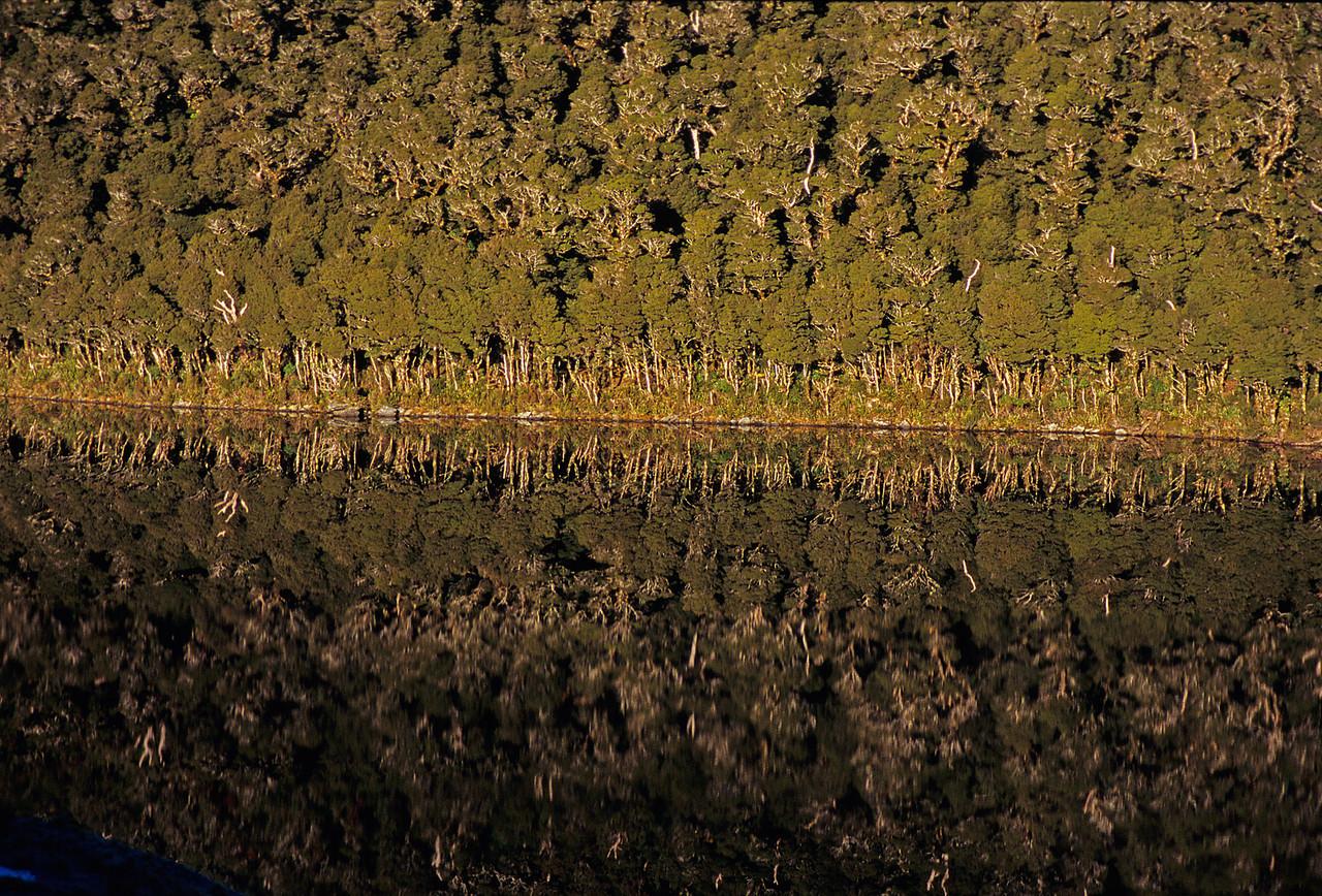 Lake Clarke