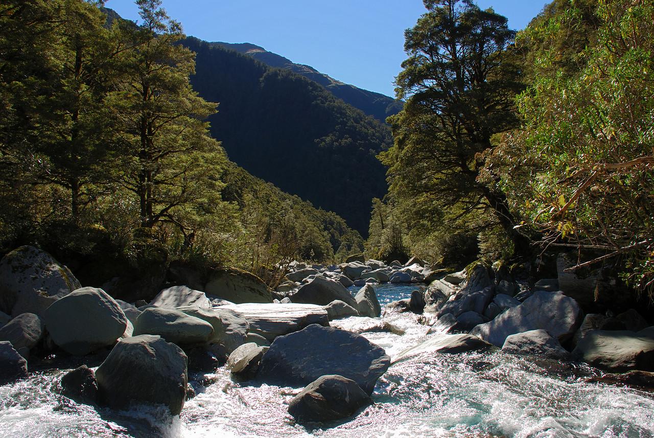 Turnbull River valley head, just below Cramp Creek