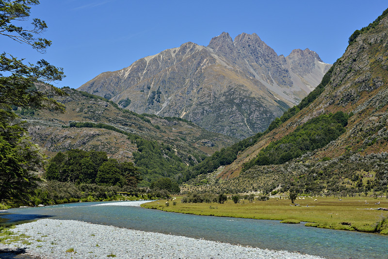 Caples River and Tooth Peak