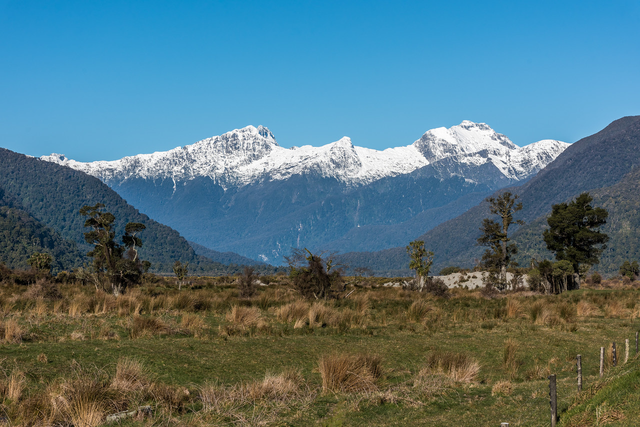 Mt Campbell, Lopside Knob and Mt Diomede from the Haast Pass Highway.