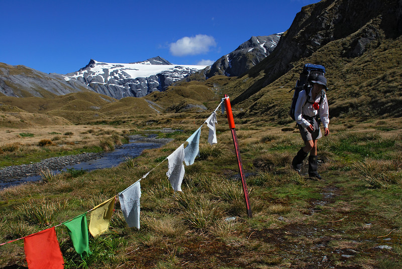 The nepali prayer flags near Cascade Saddle. Mt Tyndall and the Isobel Glacier above.