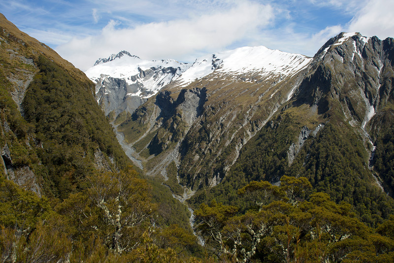 Wilson Creek from bushline on the east ridge of Mt Cross, The Lindsay Peaks, Burn Top and The Blister are on the skyline