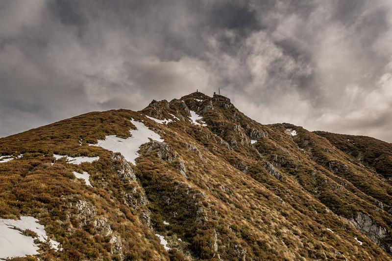 Little Mount Peel / Huatekerekere, South Ridge Track