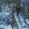 Bowyers Stream, Mount Somers Walkway