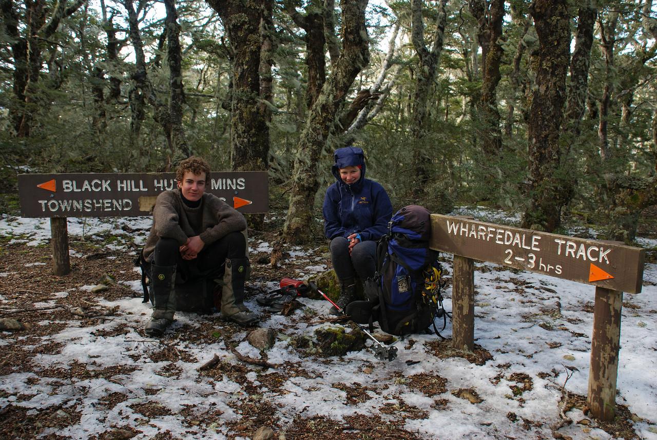 At the top of Foster Ridge, near Black Hill Hut