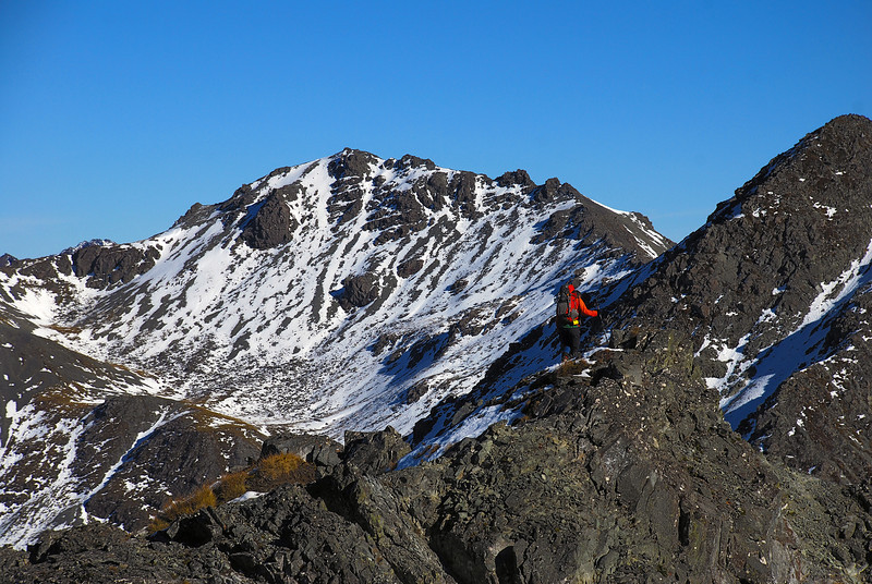 On the north-east ridge of Clare Peak, Takitimu Mountains. Unnamed peak 1424m at centre image
