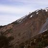 At bushline above Bog Burn Saddle