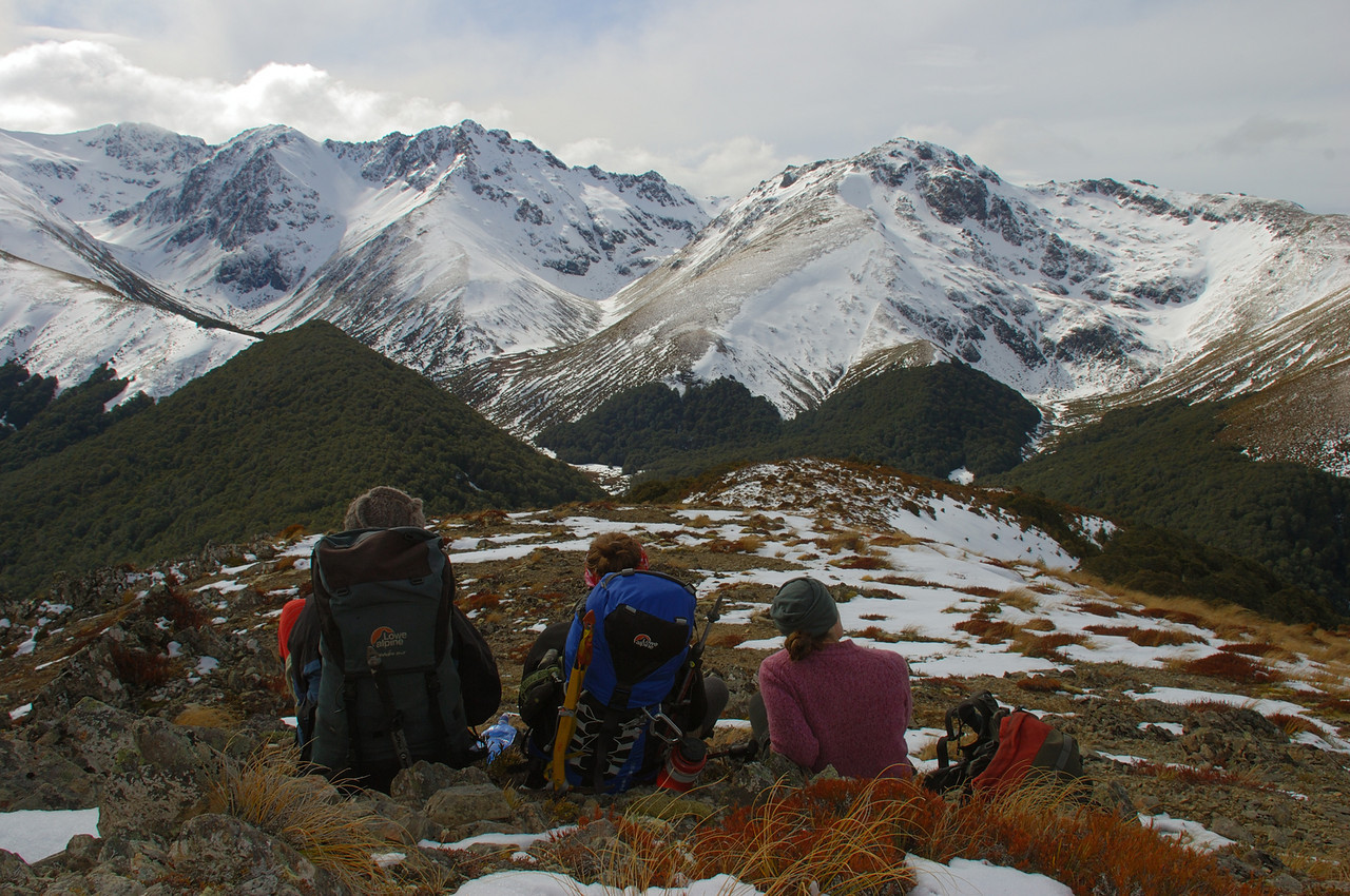 At the northern end of Mount Bee ridge, looking into Irthing Stream