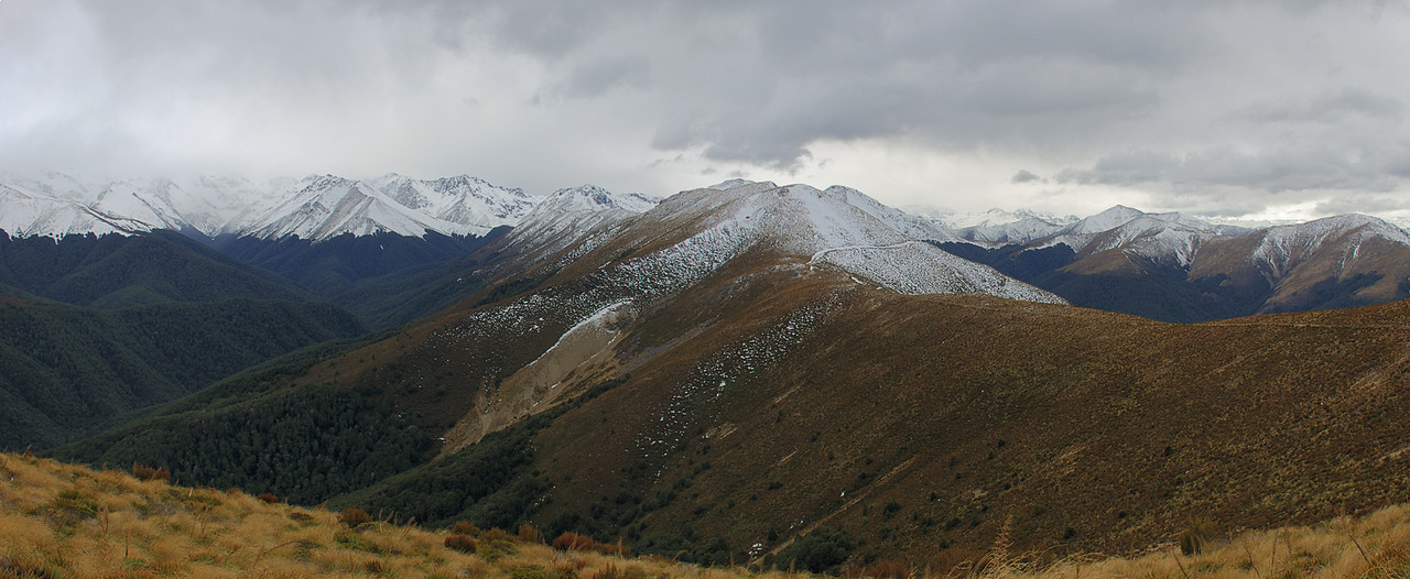 Looking north along Mount Bee ridge, and into Cromel Stream (left). Irthing Stream to the right.
