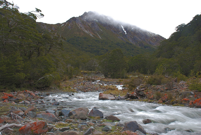 Spence Burn near Spence Biv, Takitimu Mountains