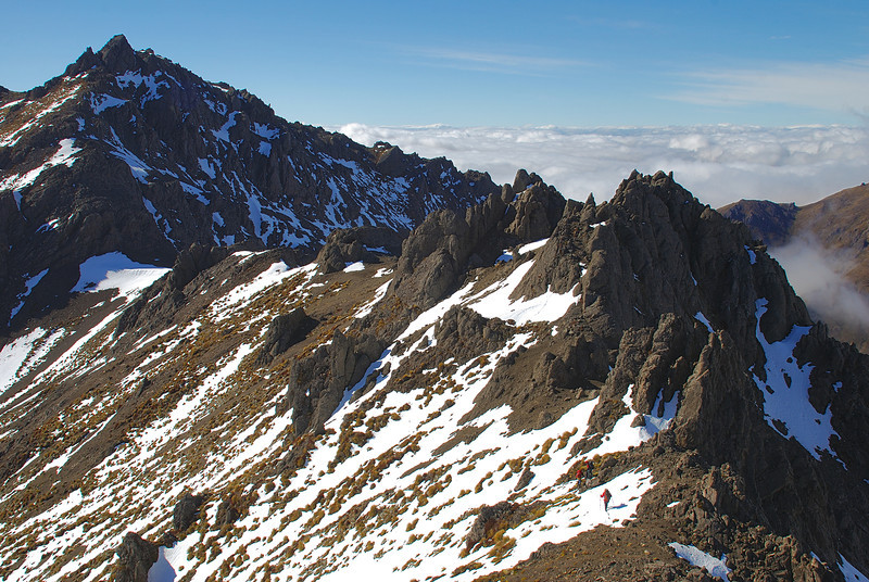 On the summit ridge of the McLean Peaks, Takitimu Mountains