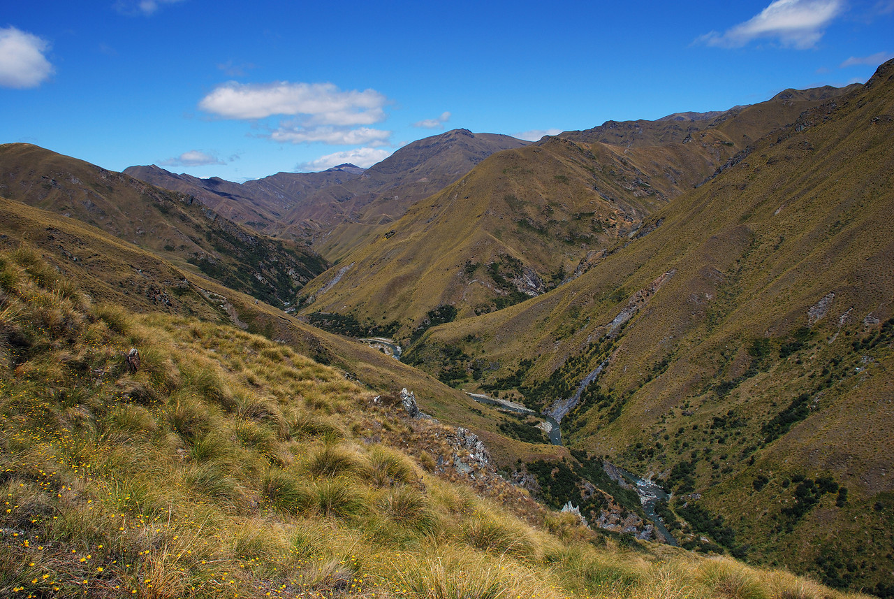 Arrow River below Roses Saddle (looking down valley)