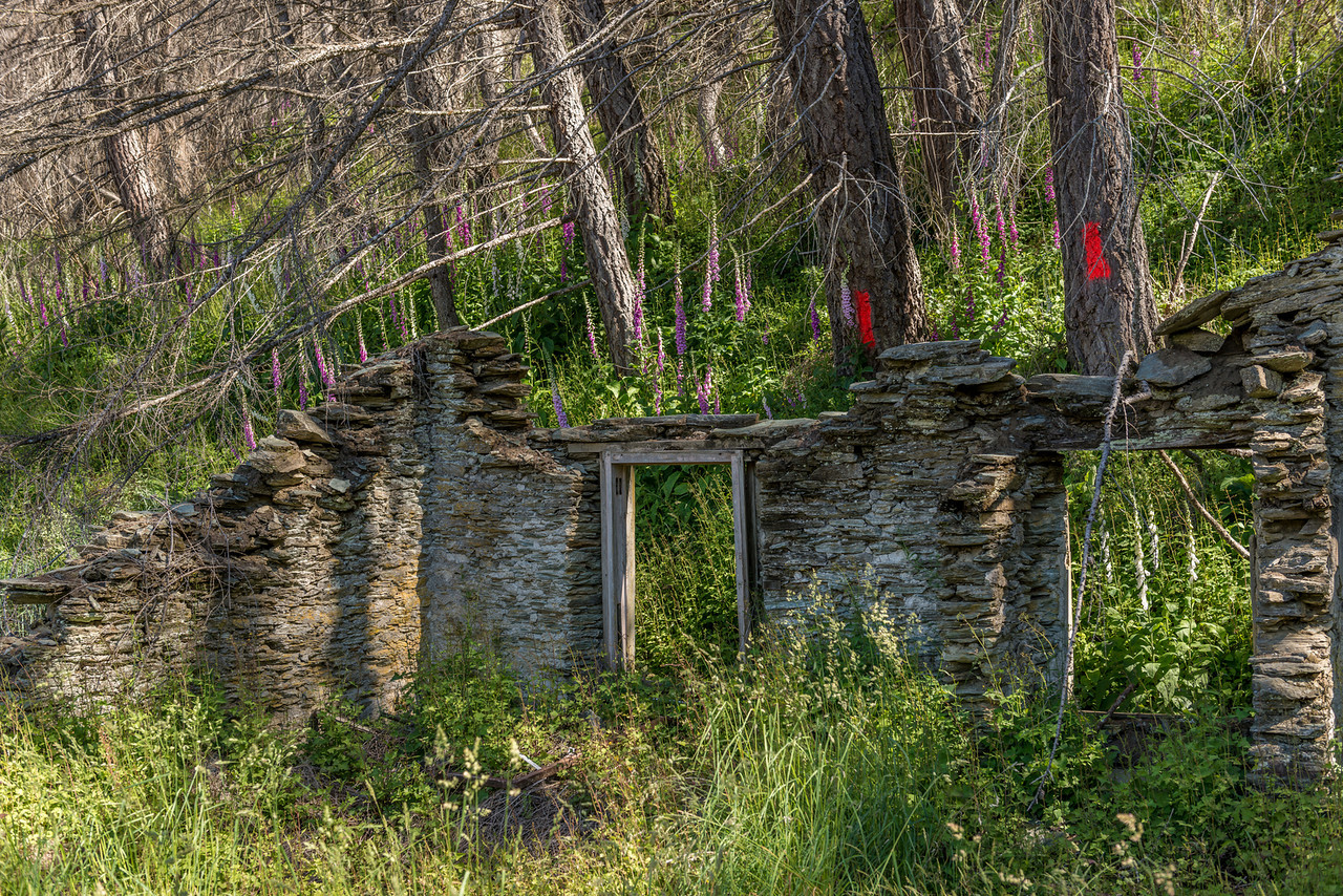 Johnston's Otago Hotel ruins, Skippers Township
