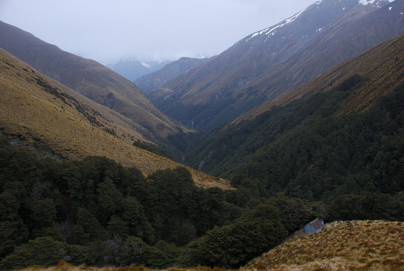 Wallers Hut, looking down Wallers Creek