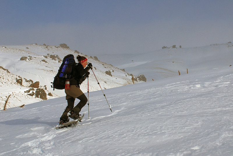 Nina snow-shoeing towards the Obelisk, Old Man Range
