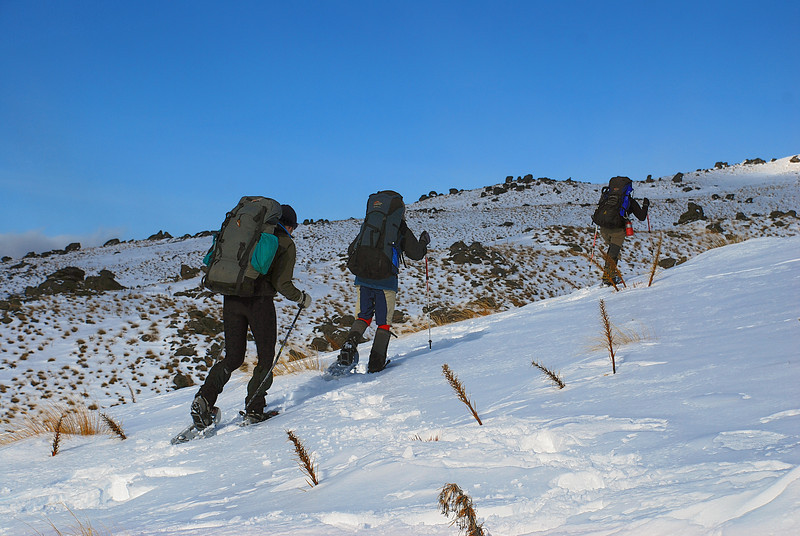 Snow-shoeing up the Omeo Gully Track, Old Man Range.