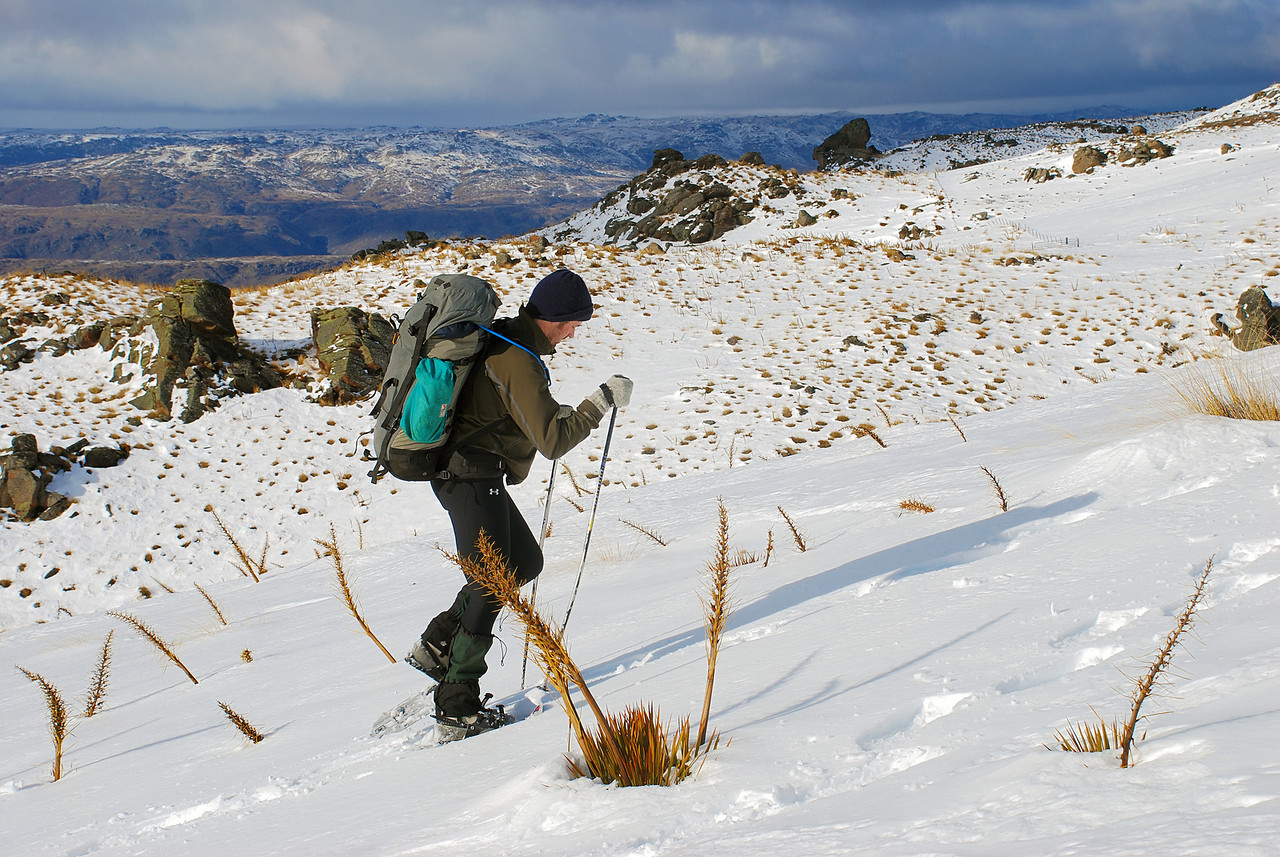 Nick snow-shoeing among spaniards. Omeo Gully Track, Old Man Range