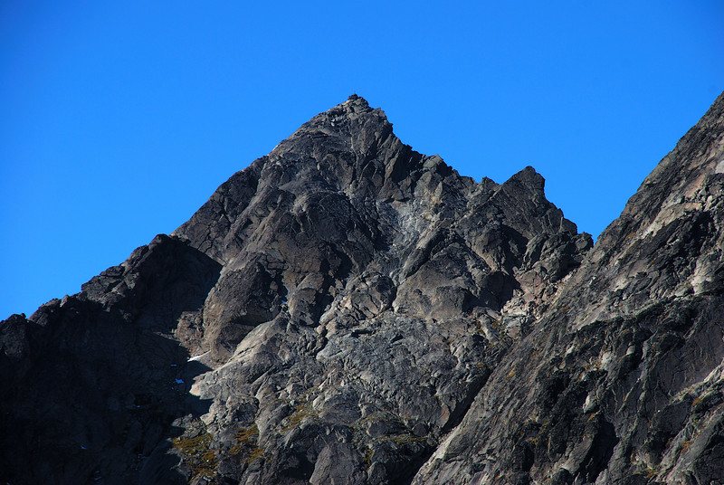 The summit of Single Cone (2319m) from the north west