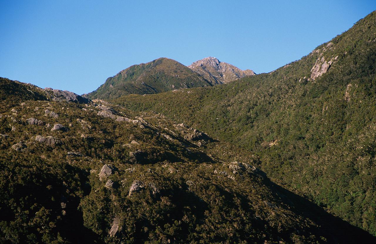 All Round Peak from Lake Astelia