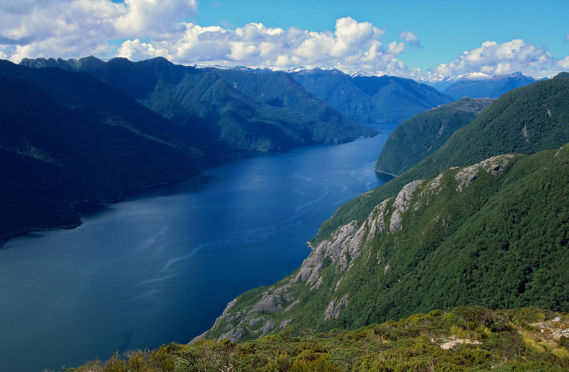 Doubtful Sound from the top of Astelia Spur