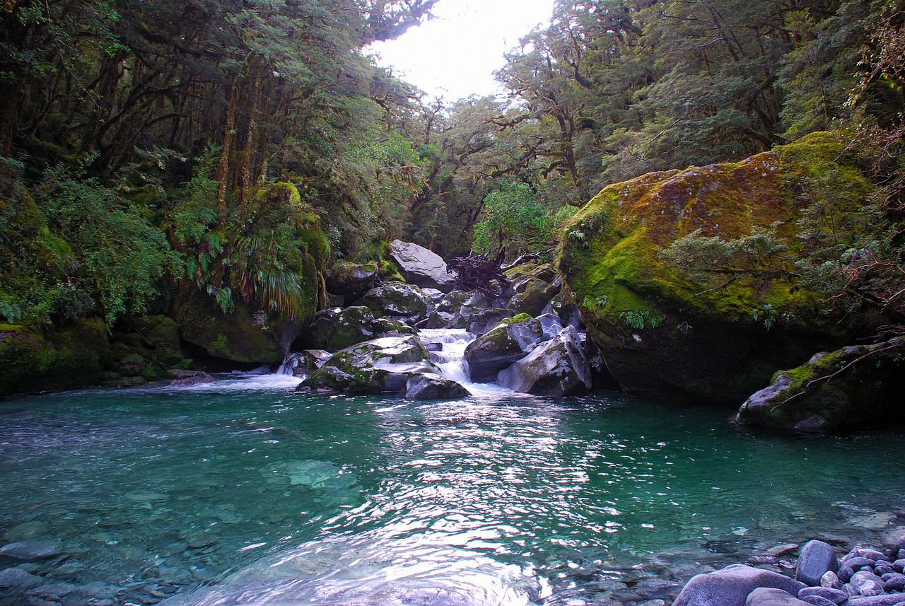 Bowen River. The deep pool at the start of the second gorge