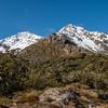 Pt 1715m and Pt 1561m above Little Homer Saddle, Bryneira Range.