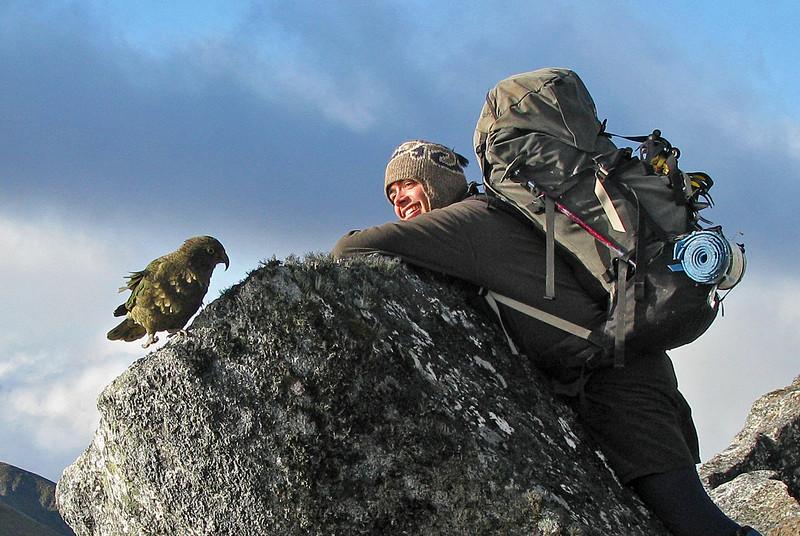 Danilo and kea, Rocky Top. Photo by Nina Dickerhof