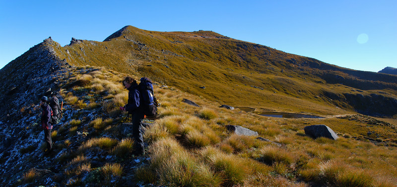 On the ridge south of peak 1453m, above Lake Monowai