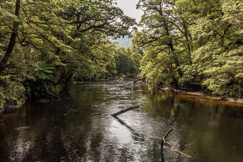 Seaforth River