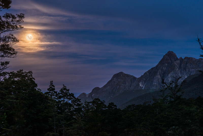 Full moon over Mount Gray. Upper Spey Hut, Dusky Track.
