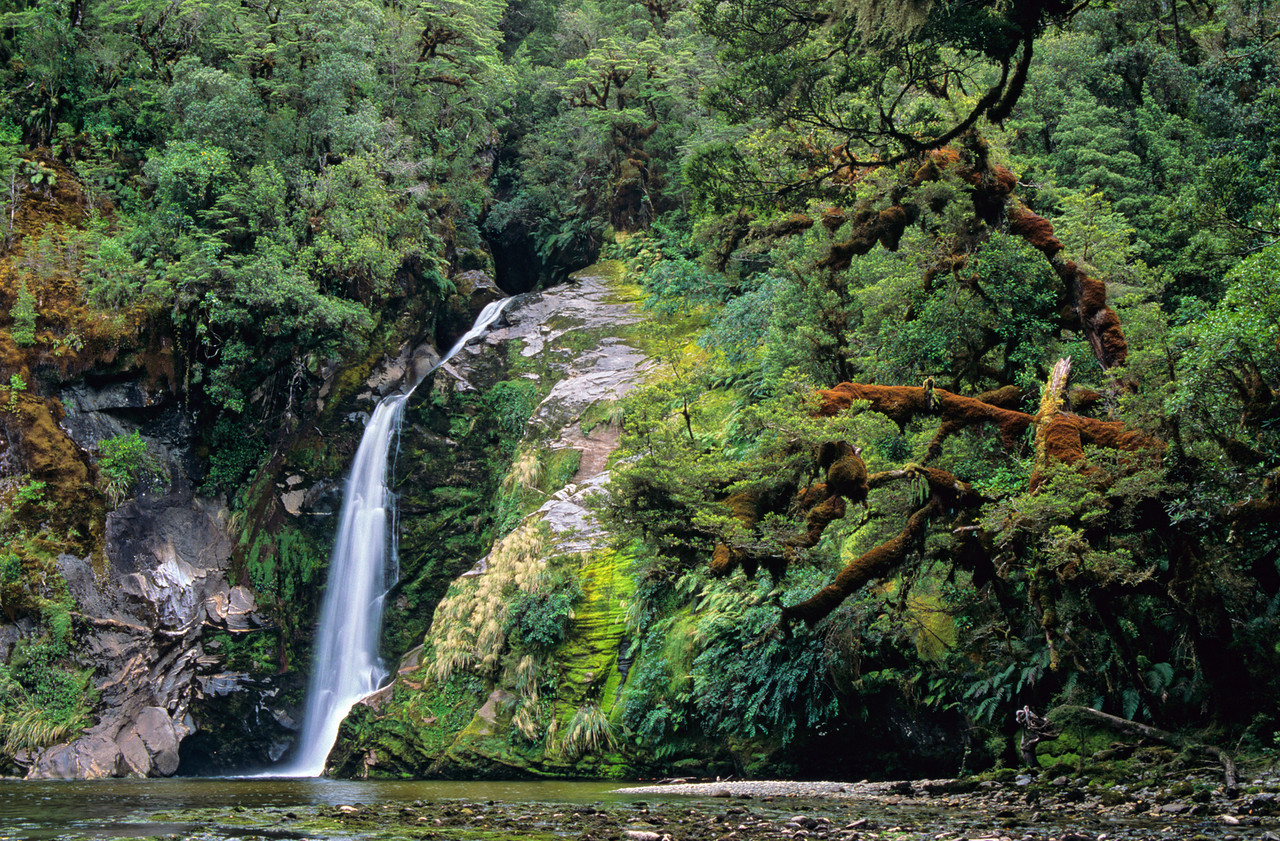 Waterfall, Seaforth River, Dusky Track