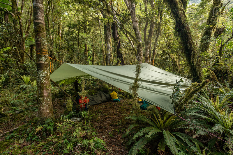 Campsite in Katherine Creek. George Sound Route, Fiordland National Park.