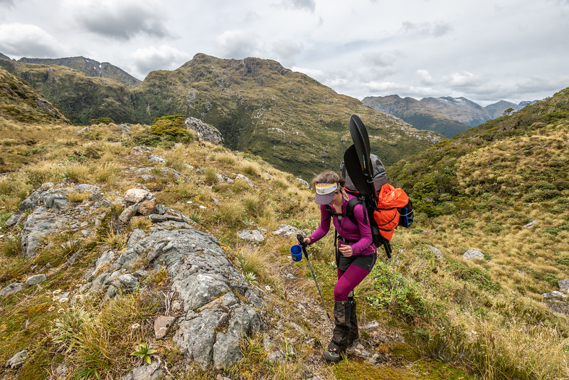 On Henry Pass. Mount Elwood behind. George Sound Route, Fiordland National Park.