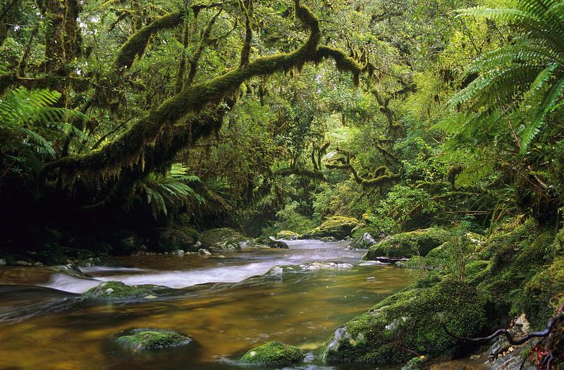 Katherine Creek