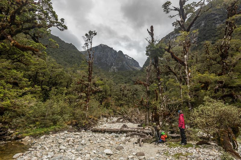 Tuaraki Stream. Ardneil Peak above.