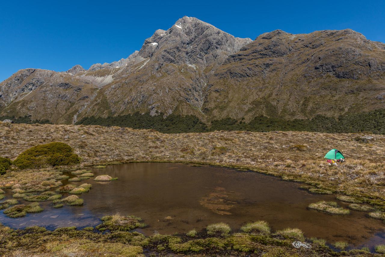Our campsite just north of McKellar Saddle. Jean Batten Peak above