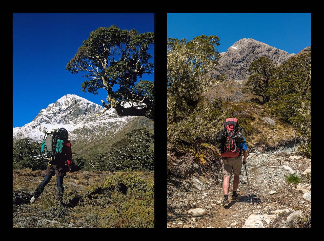 On the Caples Track just below McKellar Saddle, July 2005 (left) and November 2013 (right). This image is typical of DoC's current fashion of 'upgrading' many of our back-country tracks to benched highways