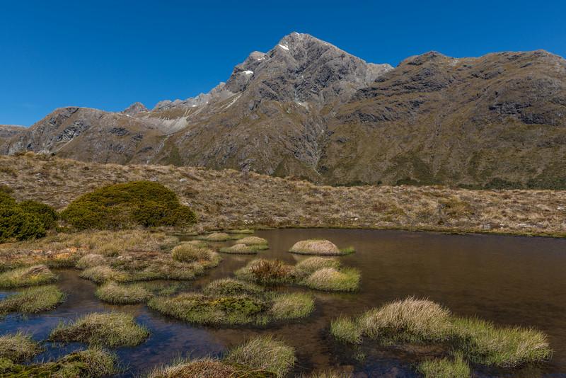 Jean Batten Peak from our campsite just north of McKellar Saddle