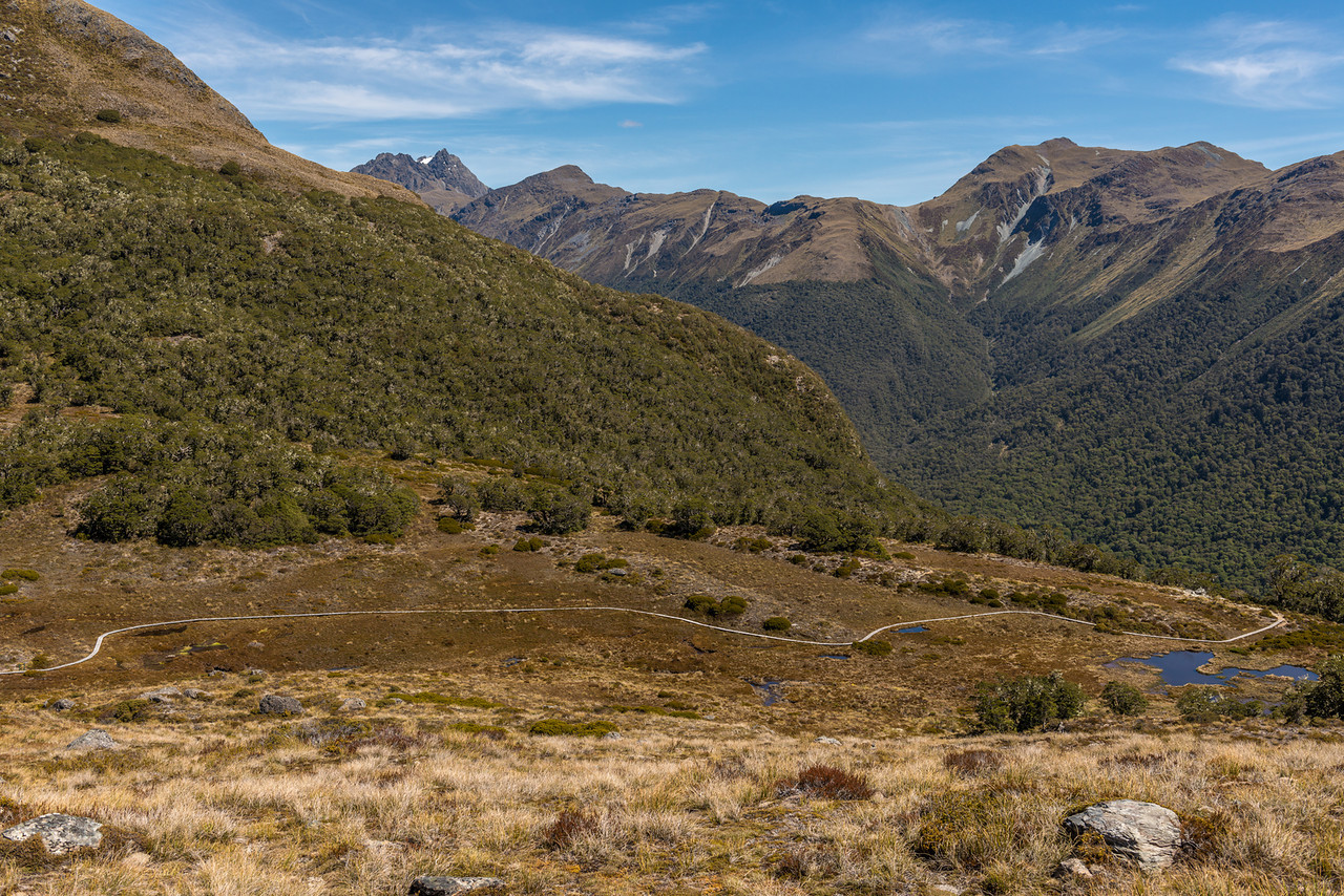 Boardwalk on McKellar Saddle. The Livingstone Mountains in the background