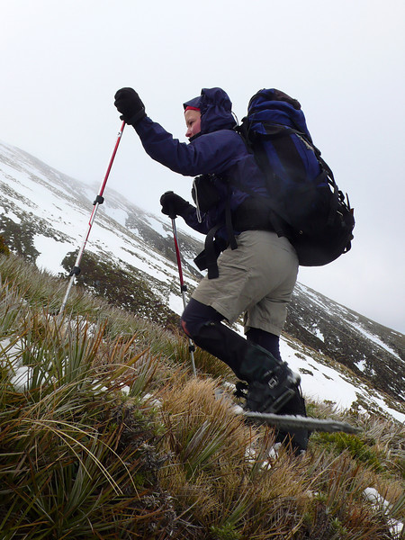 Snowshoes - good for tussock too!