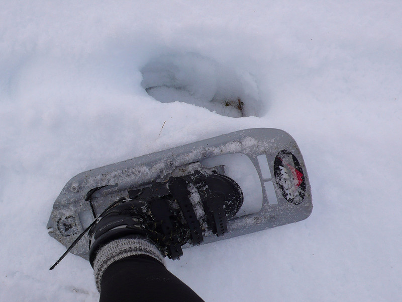 Why snowshoes are useful