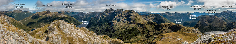Panorama from Rugged Mount, Cameron Mountains, looking south.